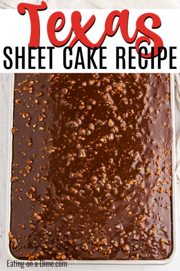 You don't have to be from the South to enjoy this decadent Texas Sheet Cake Recipe. The cake is so moist and the icing just melts in your mouth.